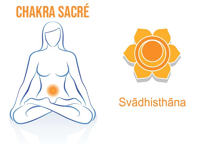 Où se situe le chakra sacré ? Le deuxième des 7 chakras.