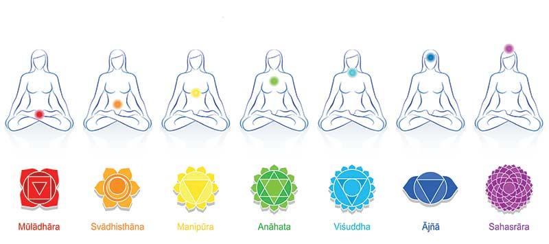 Où se situent les 7 chakras du corps humain ?